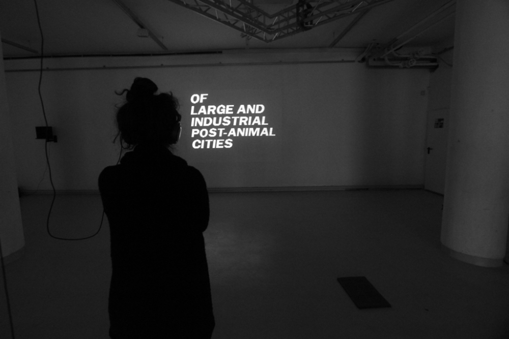 exhibition8a
