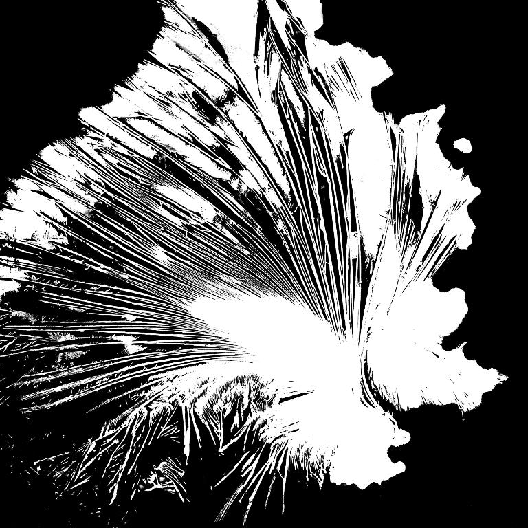 Valters Janis Ezerins_Valters Janis Ezerins. Crystallographs (1964-68)