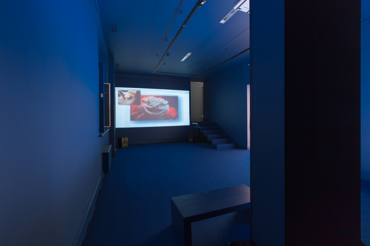1_henrot_grosse fatigue_at gallery alma