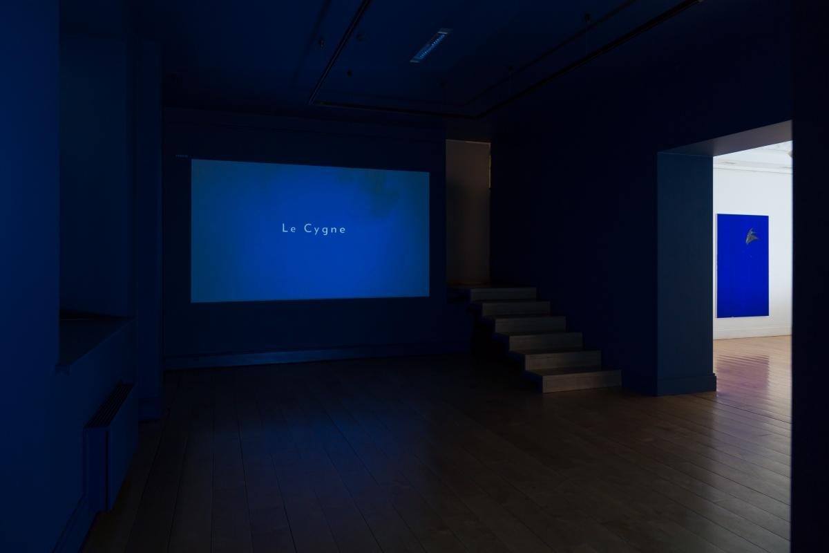 2_apalais_alma_exhibition-view