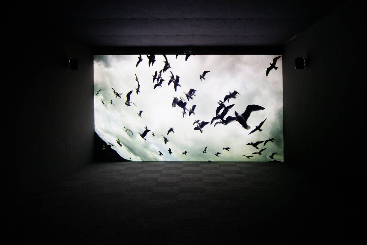 Véréna Paravel and Lucien Castaing-Taylor. Leviathan. 2012. 1-channel video, HD, color, 5.1 surround sound, 87 min. Reset Modernity! ZKM, Karsruhe, Germany, 2016. Photo: Jonas Zilius.