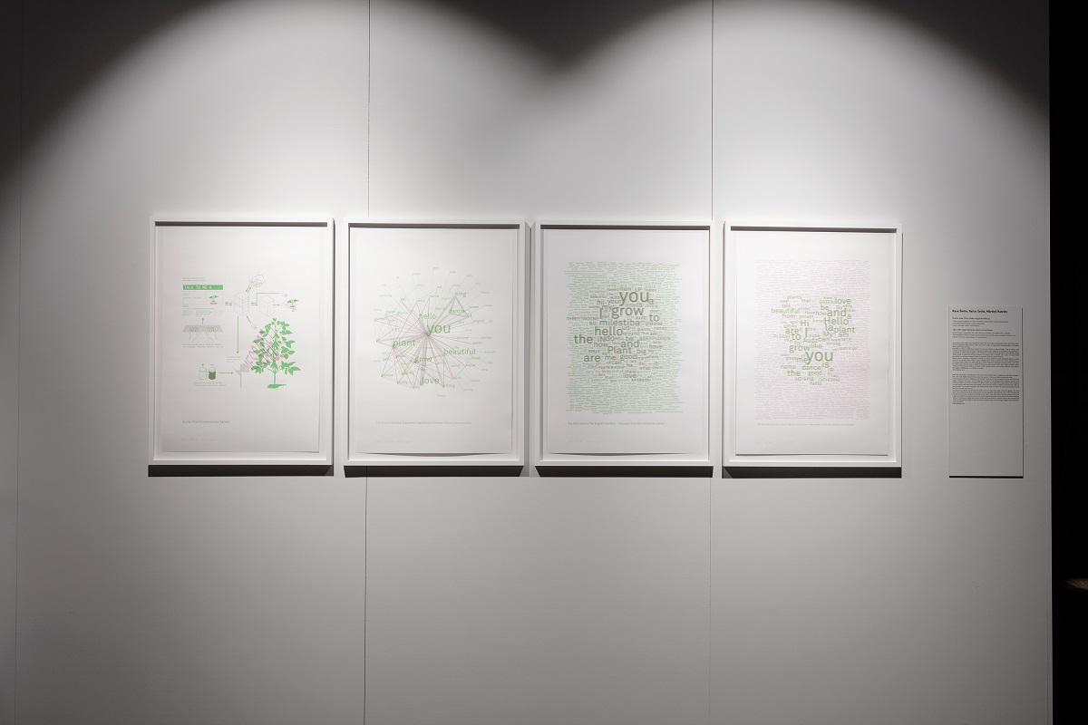 """Rasa Šmite, Raitis Šmits, Mārtiņš Ratniks """"Talk to Me"""" Exploring human-plant communication. Photography: Reinis Hofmanis"""