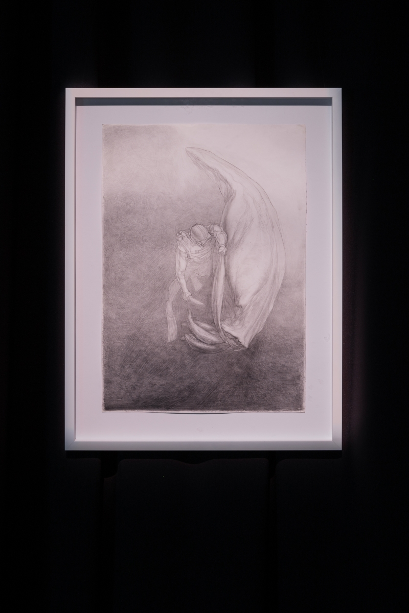 Mindaugas Lukošaitis, Animal, 2007. Graphite on paper; 60.2 x 42.8 cm.