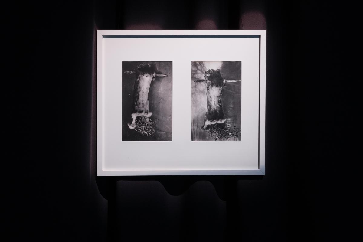 Alfonsas Budvytis, Oscar I; Oscar II, 2002. Silver gelatin print; 30 x 20 cm.