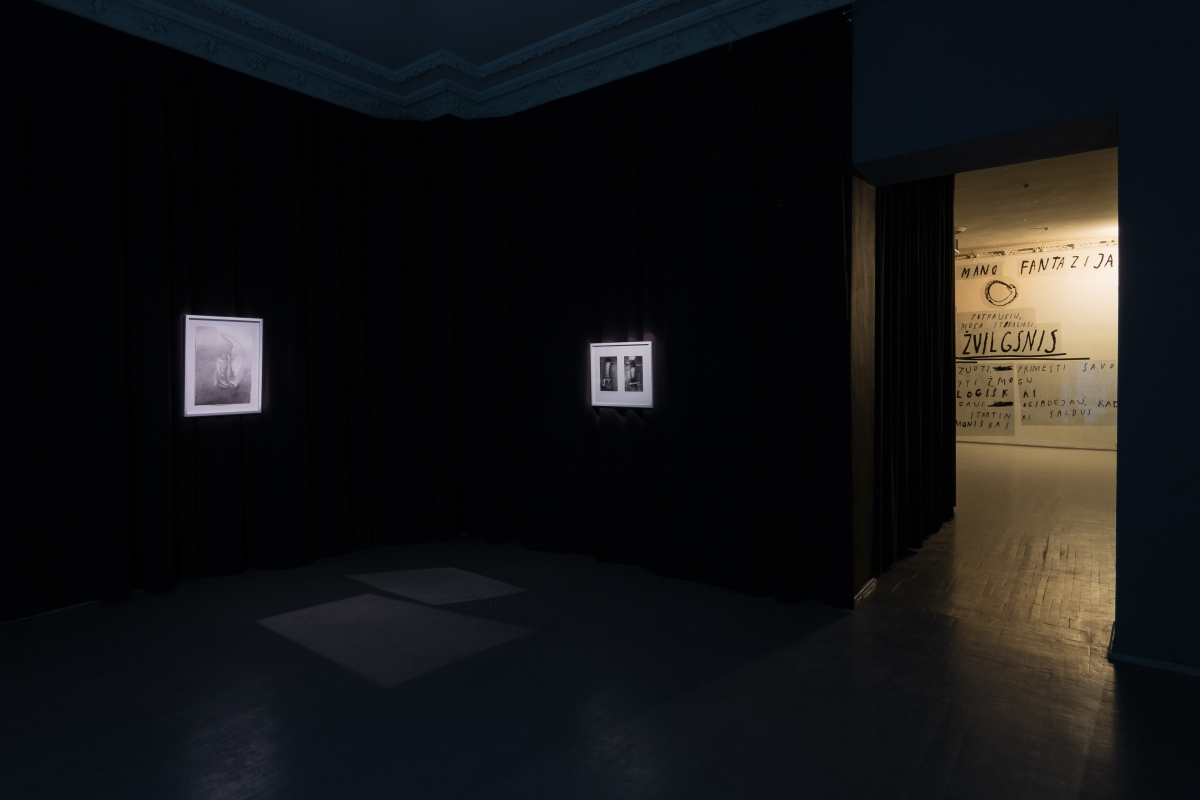 Body and Darkness, exhibition view, Gallery Vartai, 2017