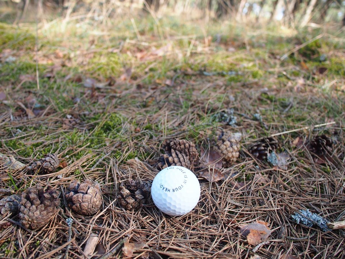 Albert Allgaier, Golf project, Nida, 2016. Photo: Živilė Etevičiūtė