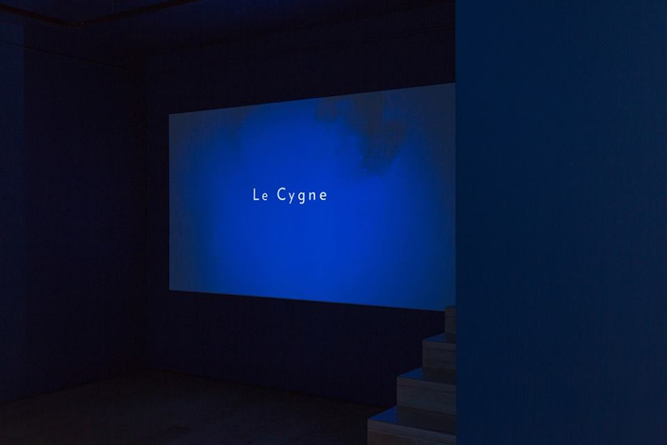 Ēriks Apaļais 'Le Cygne'. Exhibition view, 2016. Photo: courtesy of Alma gallery