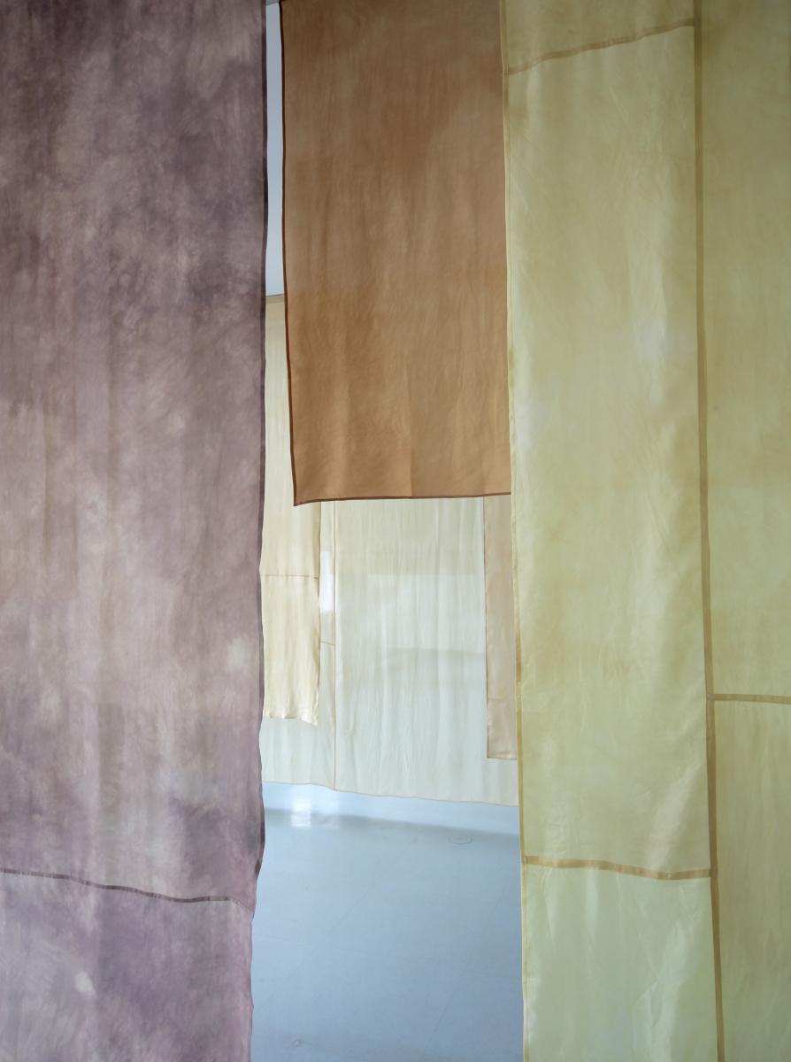 Hildur Bjarnadóttir. Symbiotic Relationship. Silk, plant dye, acrylic paint, 201