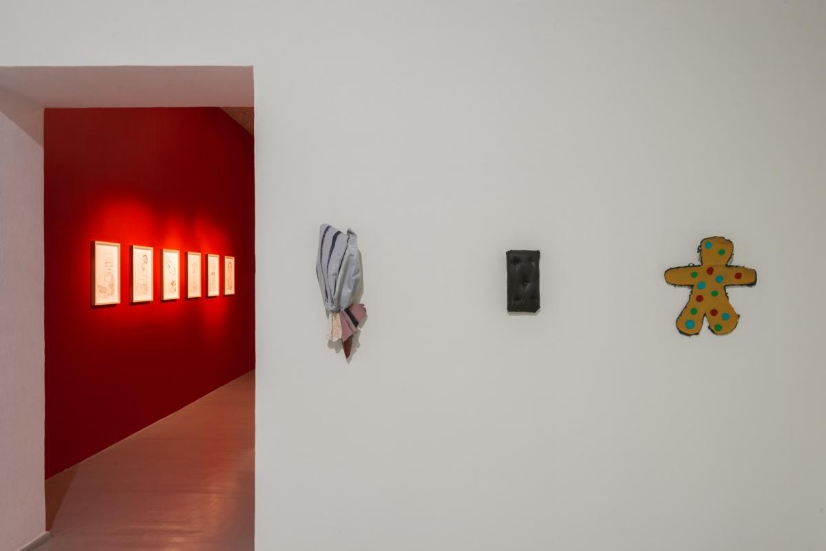 Egle Jauncems, Malnutrition, exhibition view, 2017, Vartai gallery