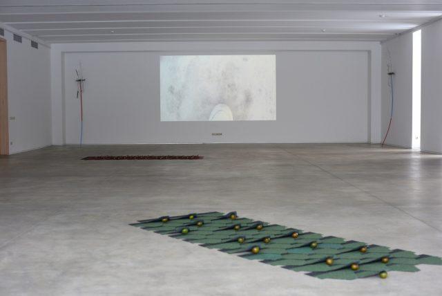 Artist: Santiago Taccetti, 255.155.2612, Pakrantė gallery space, Vilnius, 2018