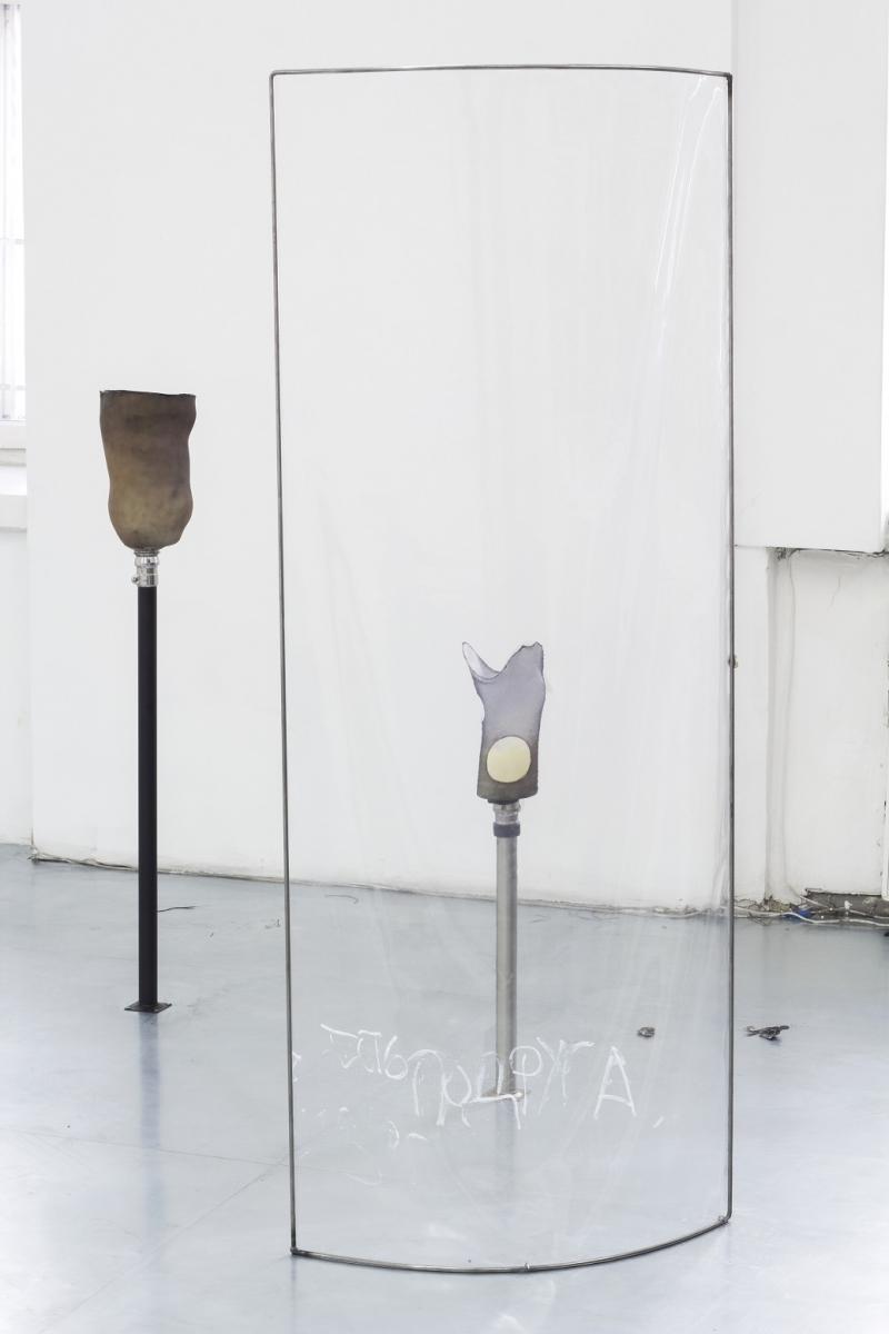 Anastasia Sosunova & Andrea Zucchini, Creeping and healing, 2018