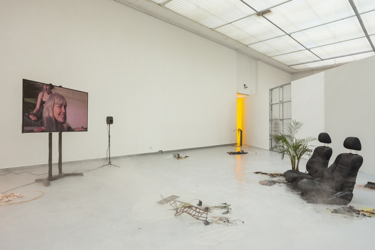LAURE PROUVOST A Way To Leak, Lick, Leek, 2016, Installation, Dimensions variable, Courtesy the artist
