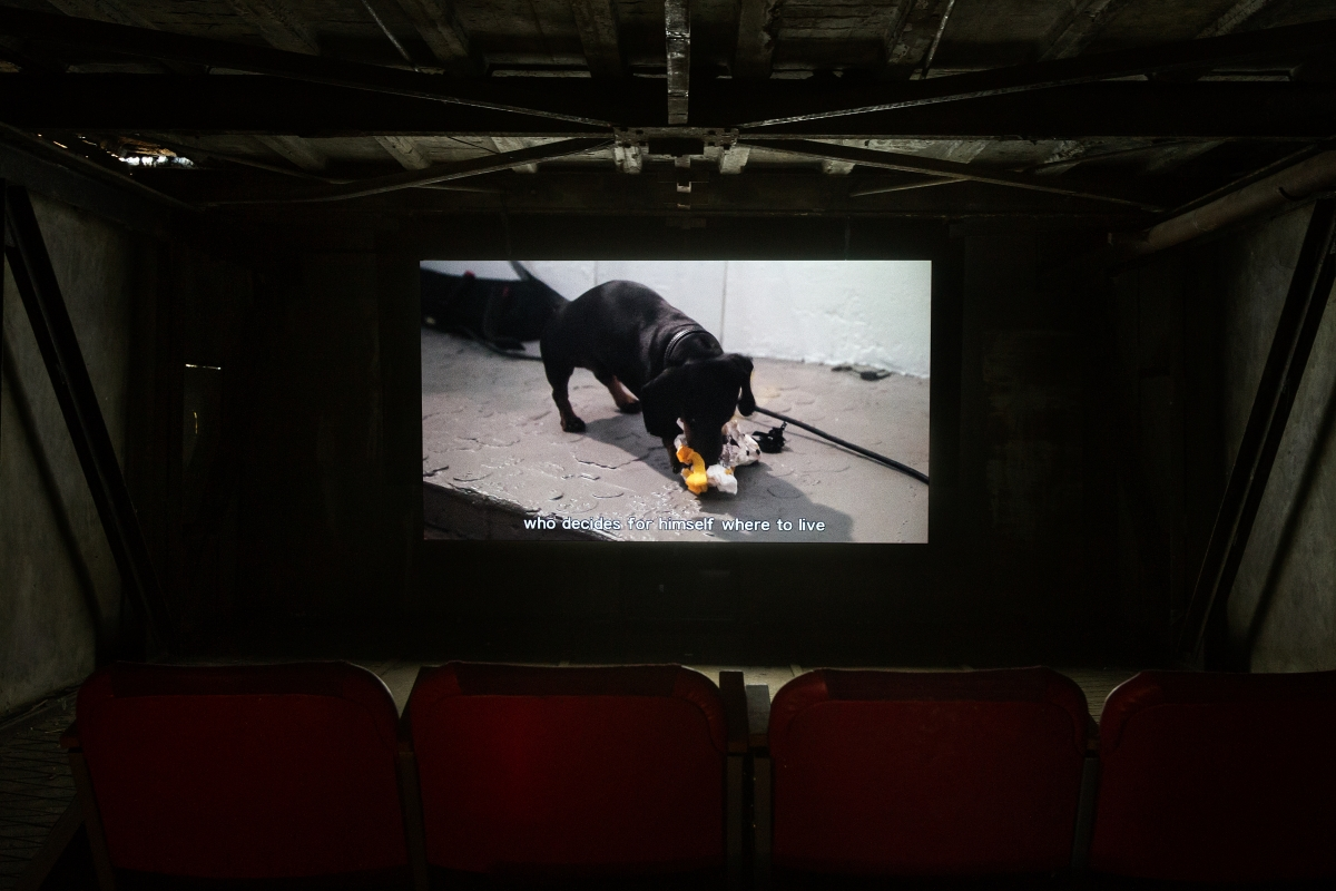 Documentary – Screen Tests for Köler Prize 2018