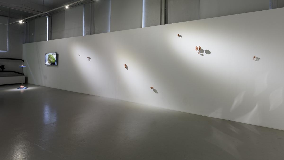 Flo_Kasearu_Holes_installation_view_03