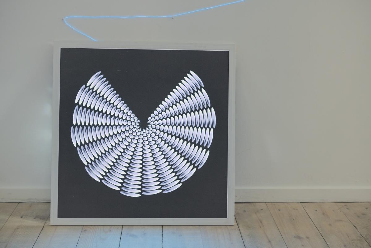Jokūbas Čižikas, Raptors Eye, 2017. Lightbox, offset print