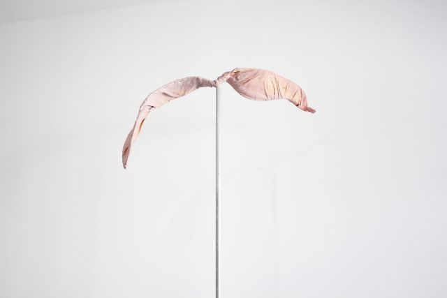 Retreat. Marija Šnipaitė, exhibition view, (AV17) gallery 2018