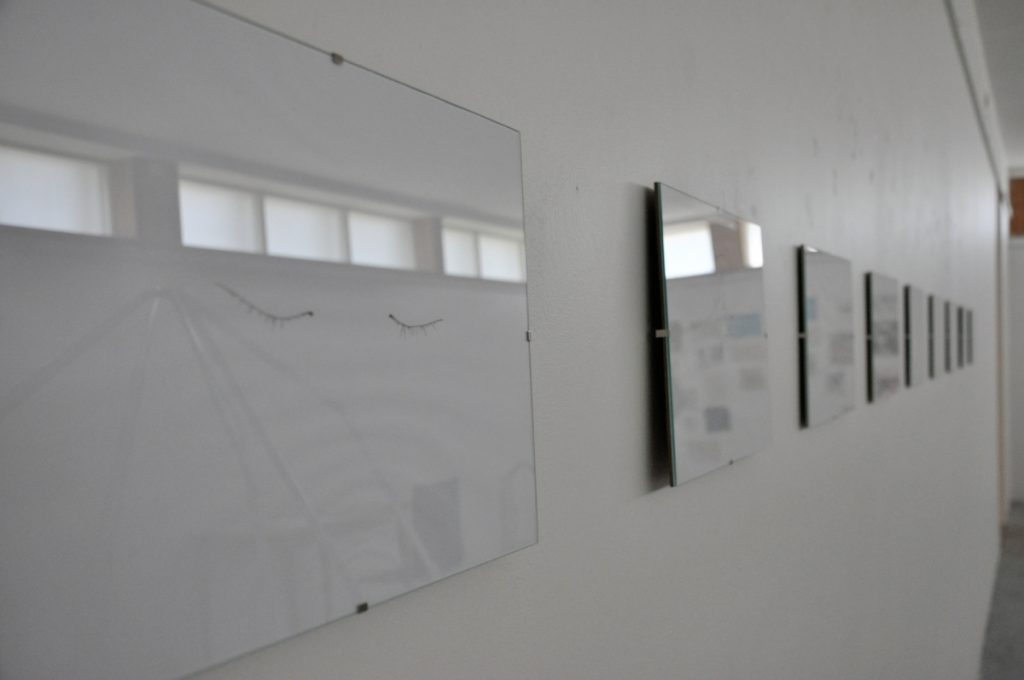"Darius Žiūra ""DMT (SWIM)"" (2014 )"