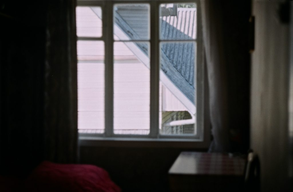 """Gerda Paliušytė """"For Cecil"""" (2018)"""