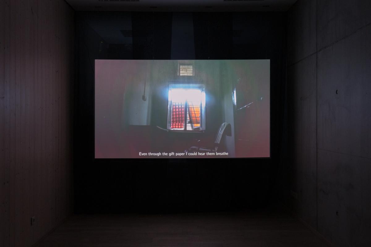 Milda Januševičiūtė (1990, LT), hope it finds you well, 2018, video installation, 15 minutes.
