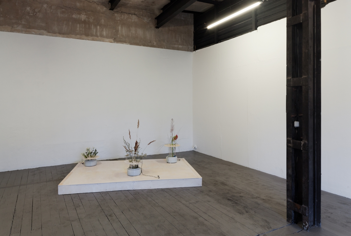 "Helena Keskküla, Flower Arrangement, 2018. ""1 iJ"" at EKKM, curated by Ekaterina Shcherbakova. Exhibition view. Photo: Paul Kuimet."