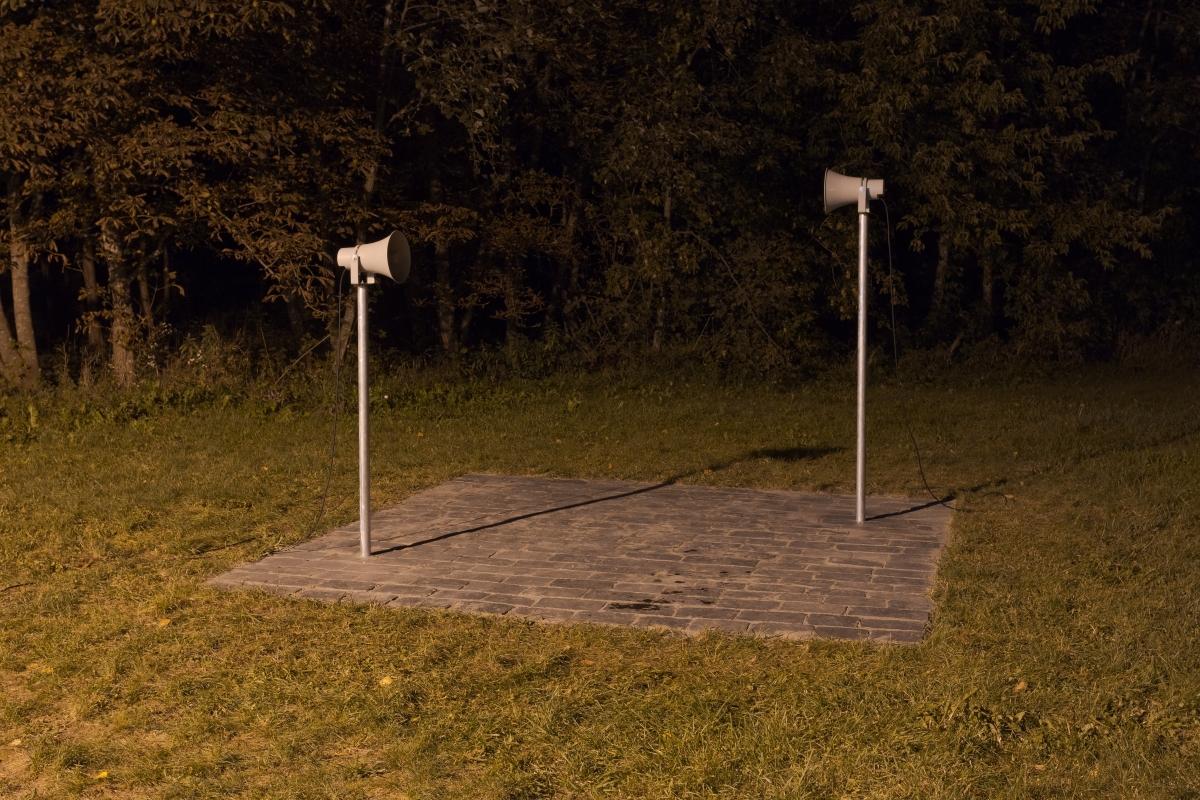 Naglis Kristijonas Zakaras (1991, LT), Rule .303, 2018, multimedia installation, variable dimensions.