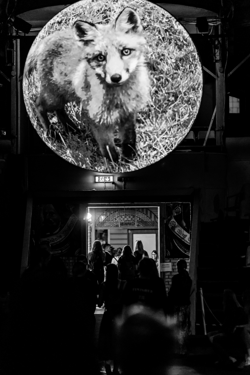 Performance by Katrina Neiburga, DJ Selecta un VJ Nei, Ragnagmati, 2018. Photo: Otto Strazds, Latvian Centre for Contemporary Art, 2018