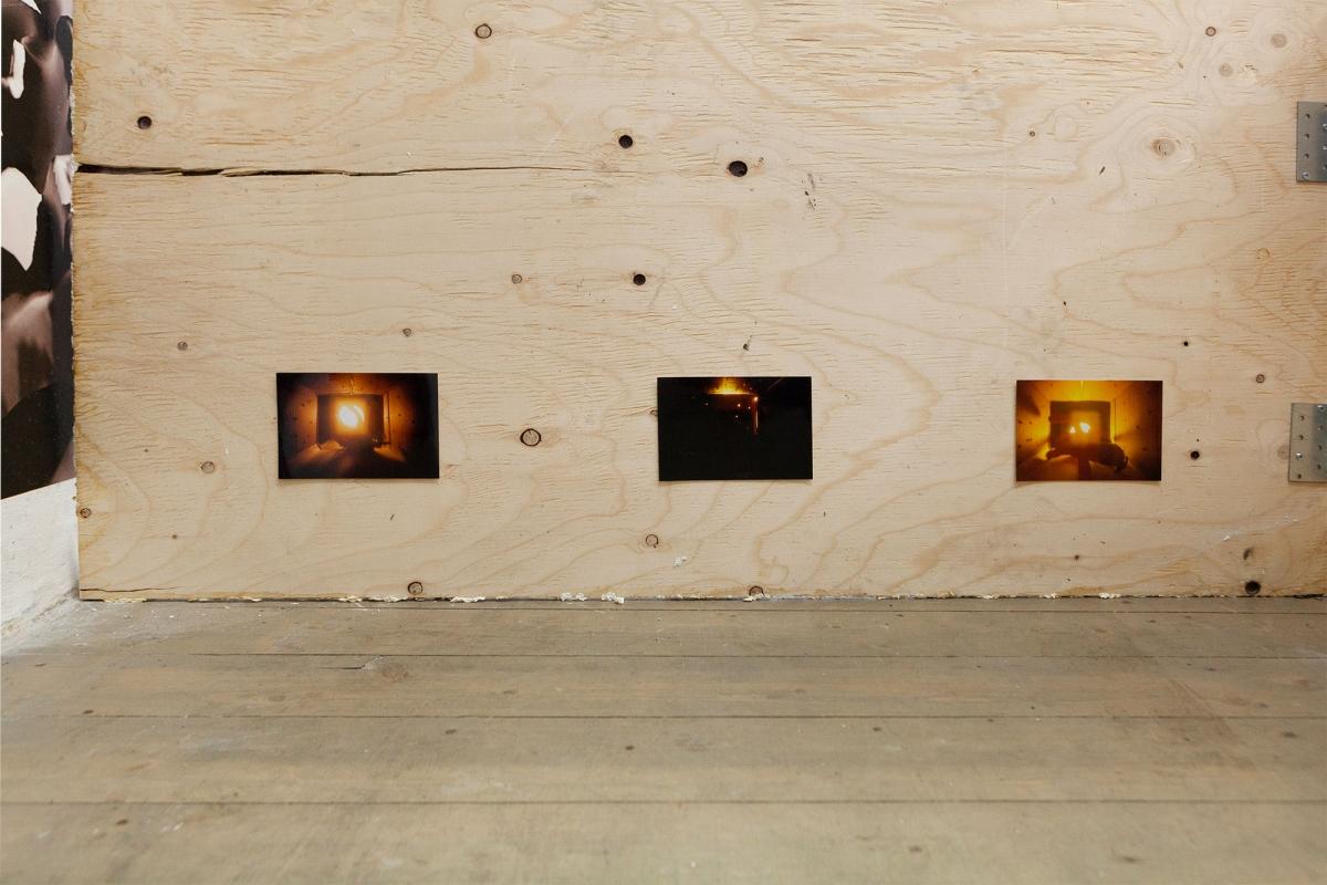Alexander Iezzi, 'Applied Aminal Behaviour Science', photographs, wood, papier-mâché, flowers