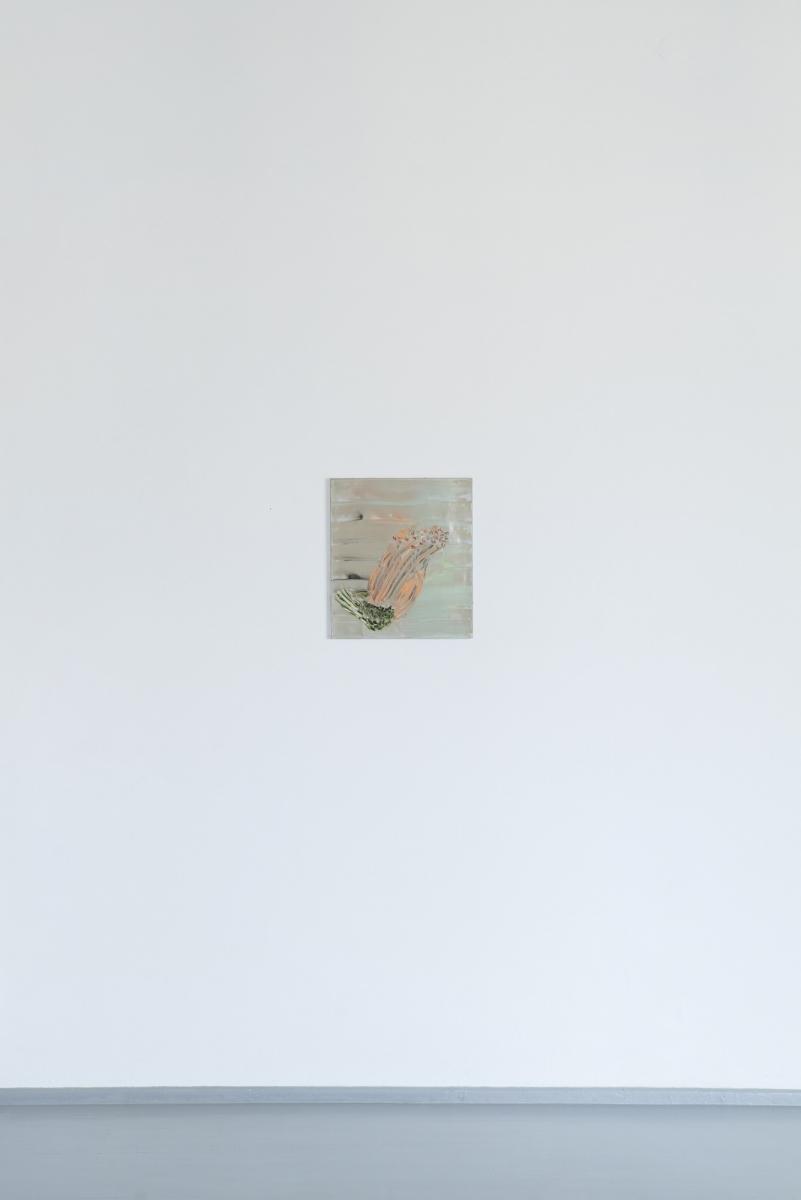 Purvas ir geles-50