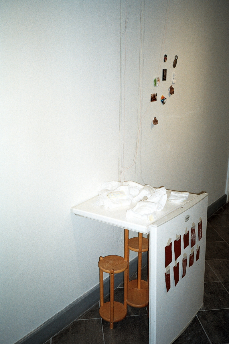 Kadi Estland, Sick Snaige. Fridge, diapers, magnets, sandpaper, balls. 2019. Courtesy of the artist. Photo by Marta Vaarik